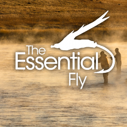 the-essential-fly